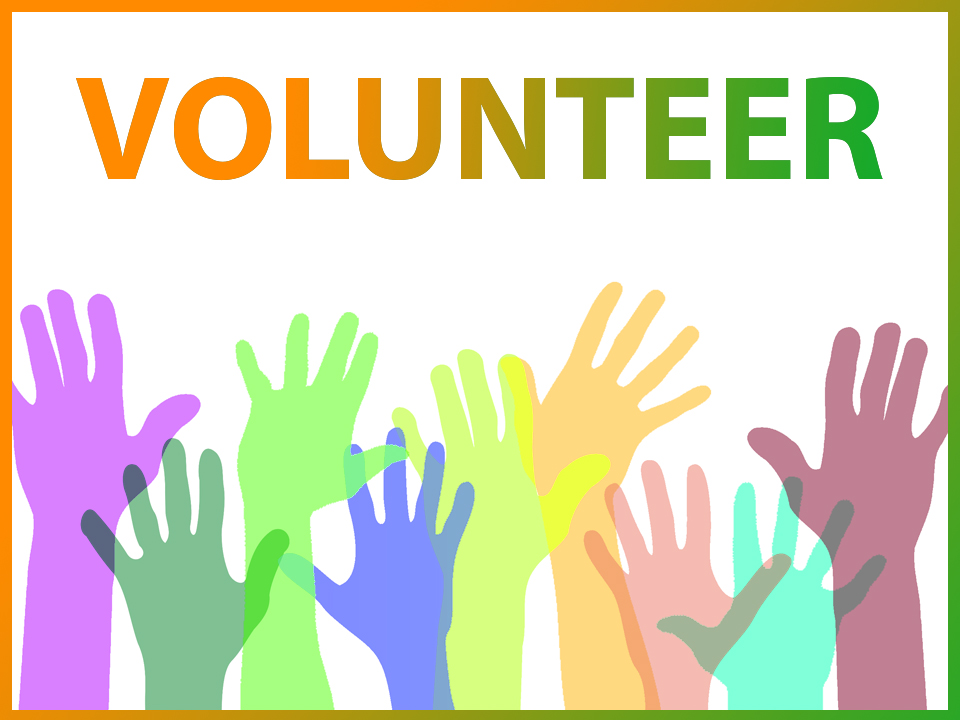 volunteer at India House